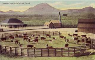WESTERN RANCH AND CATTLE CORRAL SCENE