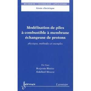 9782746231368): Fei Gao, Abdellatif Miraoui, Benjamin Blunier: Books