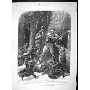 1893 LUMBERMEN ATTACKED WILD DOGS PINE FOREST MAINE: Home