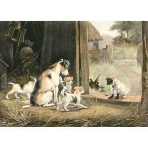 Disgrace to his Family, A Etching Berkeley, Stanley Animals, Dogs