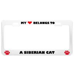 Siberian Cat Pet White Metal License Plate Frame Tag Holder