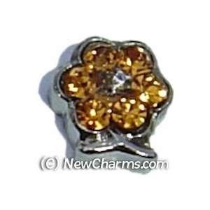 Flower Birthstone November Floating Locket Charm Jewelry