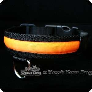 GLOWING FLASHING ILLUMINATED LIGHTED SAFETY DOG PET COLLAR~ 4 FLASHING