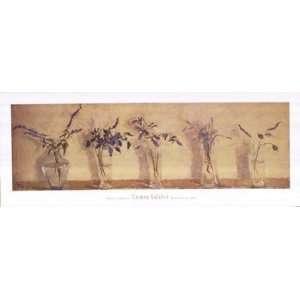 Plantas Aromticas   Poster by Carmen Galofre (39 x 15): Home & Kitchen