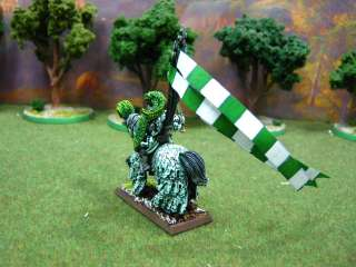 Warhammer DPS painted Bretonnian The Green Knight BR020