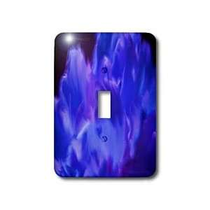 Yves Creations Graphics   Gorgeous Blue Flourish   Light Switch Covers