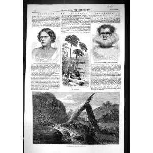 Australia Dead Emu Portrait Woman Man Antique Print