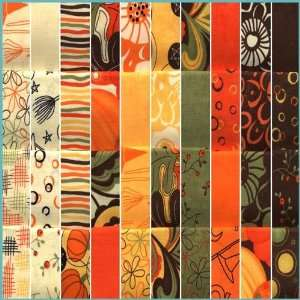 Moda Pumpkins Gone Wild Fat Quarter Assortment Fabric By