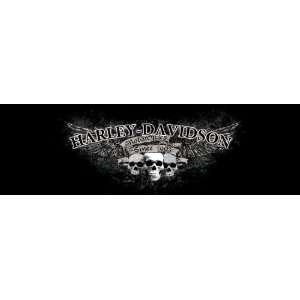 Vantage Point Harley Davidson Window Graphics Sports