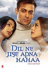 DIL NE JISE APNA KAHAA   Salman Preity   Bollywood DVD