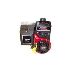 Briggs & Stratton Horizontal Engine 14.5 TP 1 x 2 29/32