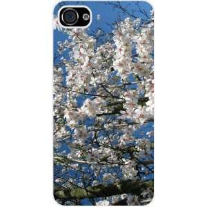 Rikki KnightTM Cherry Blossom Tree Branches White Hard