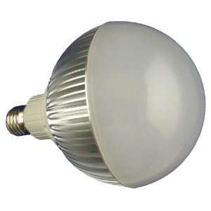 FD 12CW E27 Dimmable High Power 12 LED Par38 Lamp, 17 Watt Cold White