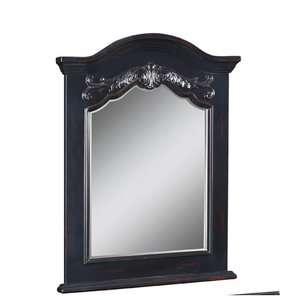 Portrait 40 x 28 Bathroom Vanity Mirror in Hand Rubbed Black