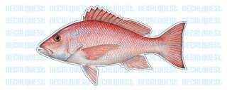 RED SNAPPER  Fish Decal  window sticker truck fishing
